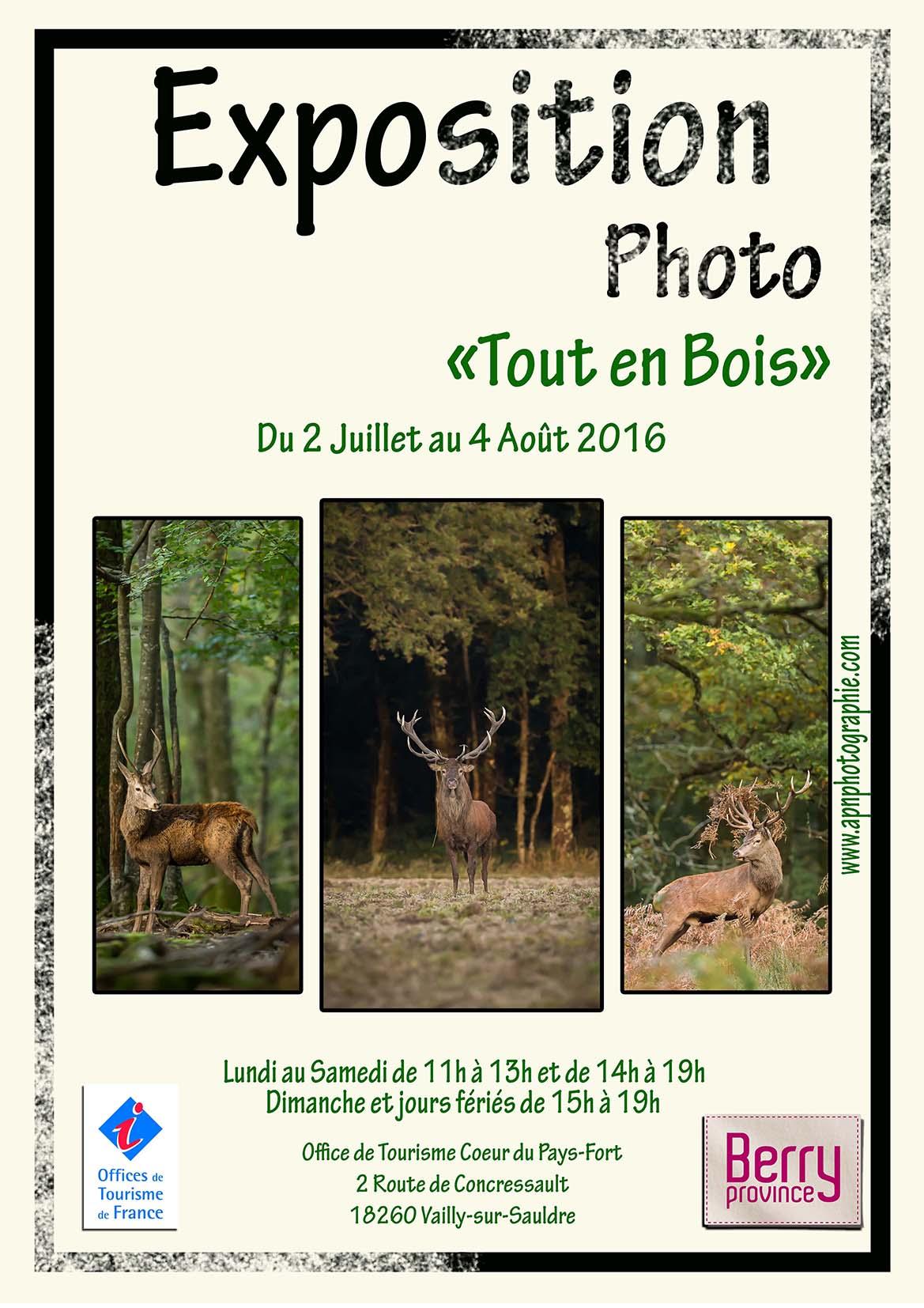 """2016-Exposition personnel """"tout en bois"""""""